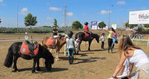 Clases de equitación. Cursos de hípica en verano, con ponis y caballos.