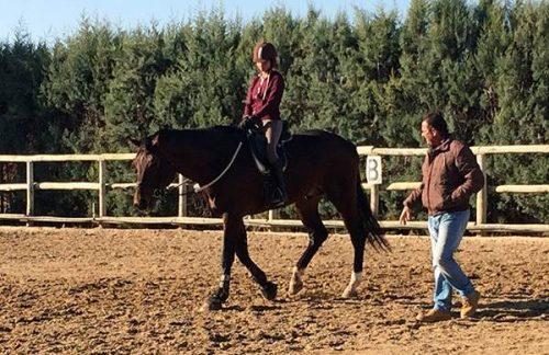 Entrenamiento a medida con el caballo en la Escuela Hípica Riopudio. Espartinas, Sevilla.